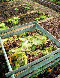 Climate Change Composting Combat Climate